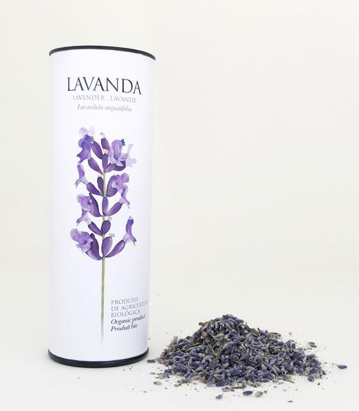lavanda-angustifolia.jpg